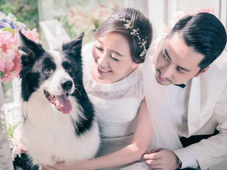 8個和毛小孩拍婚紗注意事項!我的婚紗照怎能少了你呢(´◕ω◕`) ♥