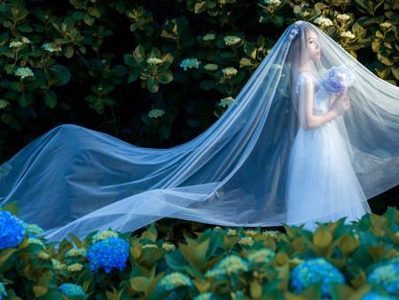 六月新娘看過來!熱門花季婚紗景點,你收藏了嗎?