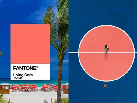 花1分鐘學新知!原來流行色是這樣來的 帶你了解色彩權威「Pantone」