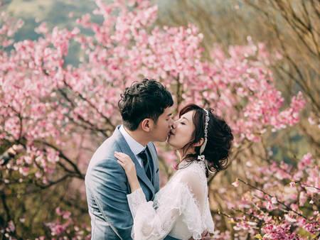 春暖花開~公開台灣3大「櫻花季秘境」拍婚紗、約會都超合適❤