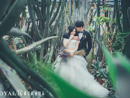 陰天怎麼拍婚紗?12張「冷空氣婚紗照」,拍出愛情的極簡浪漫♥