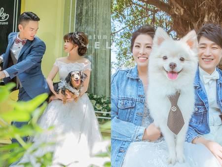 想拍「寵物婚紗」?帶心愛毛小孩拍婚紗 5大重點要注意~