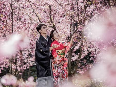 穿上夢幻粉色婚紗吧!全台3大櫻花秘境口袋名單 追逐期間限定的浪漫
